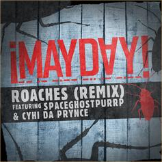 Roaches (Remix)