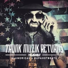 Trunk Muzik Returns