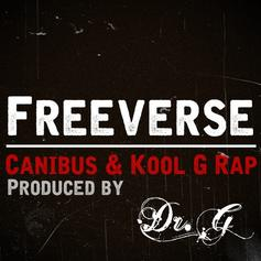 Freeverse