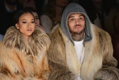 Chris Brown Is Reportedly The Father Of A Baby Girl [Update: Karrueche Calls It Quits With Brown]