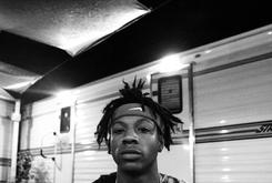 "Joey Bada$$ Announces 1st Annual ""Steez Day"" Festival"
