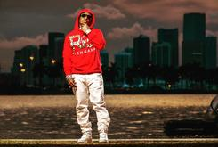 """Birdman Announces New Album """"Ms. Gladys""""; Says """"Rich Gang 2"""" Dropping In July"""