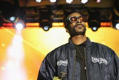 "Snoop Dogg Criticizes ""Roots"" Reboot: ""I Don't Understand America"""