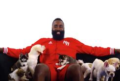 Athletes Show Love For The Dogs On #NationalPuppyDay