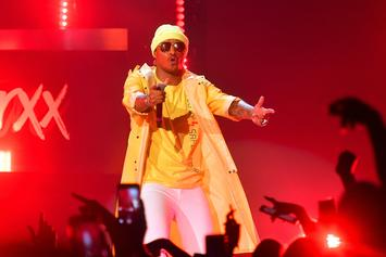 The FutureHive's Top 5 Wildest Moments